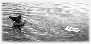 Roosty's interests include spending his leisure time waterskiing behind an original Ethan Kamerman motor boat.